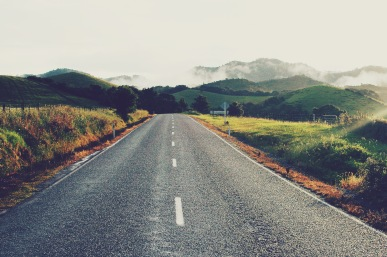 My very first NZ road: Russell Road, in Whangaruru, Northland