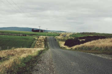 Rollercoaster roads in the Catlins, Southland